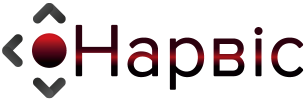 narvis-logo-big
